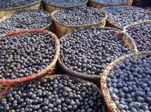 Where To Buy Acai Berries | Acai berry, Where to buy acai ...