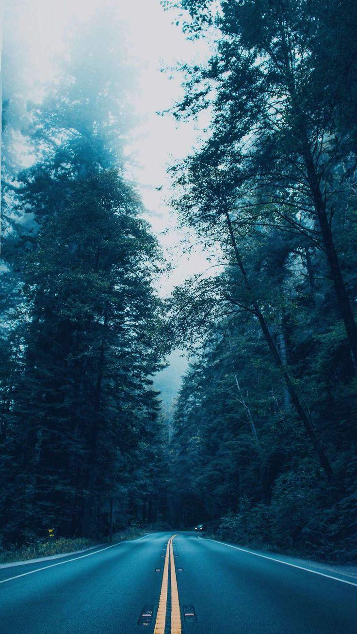 4K Nature Road iPhone Wallpaper Imagen fondo de pantalla
