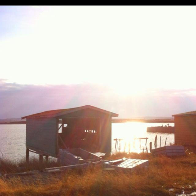 Frenchman's Cove, Nl