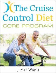 cruise control core program book cover