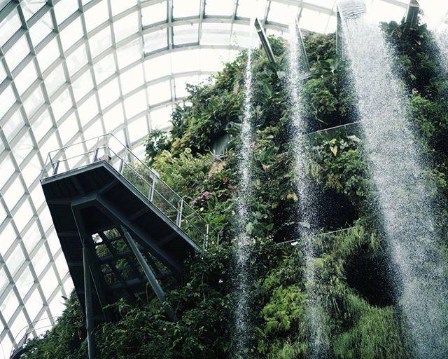 Ingin #liburan ke #gardensbythebay di #singapura tapi pusing cari hotel murah? Langsung aja ke @misteraladin #hotelfair - discount hotel hingga 75% off plus Rp200 ribu cashback! Jangan sampai kelewatan ya, promo nya cuman sampai tgl 1 Mei (tinggal 2 hari lg!). For more info, please visit:http://misteraladin.com/hotelfair2016  #AladinGetaway #LiburanGayaKamu