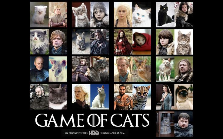 Somewhat book related...  Game of Thrones characters--AS CATS