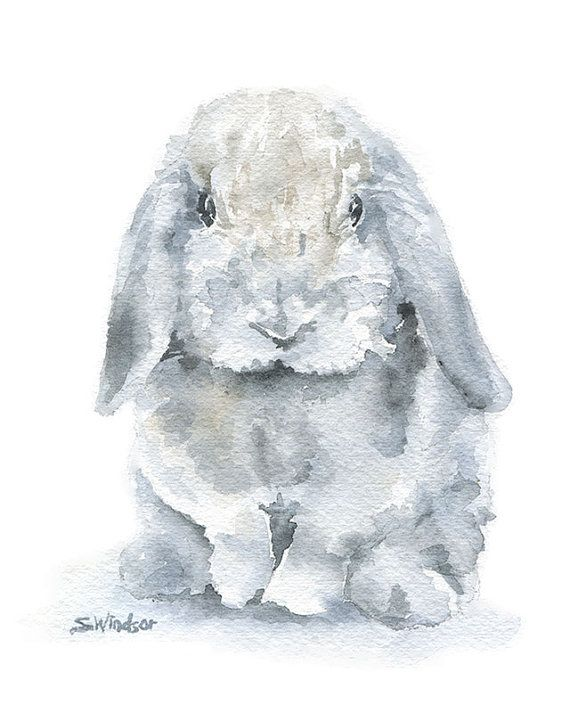 Watercolor Painting Bunny - Mini Lop Rabbit - 8 x 10 - Gray Nursery Art - Giclee Print