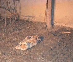 Çocuklar en fazla ev kazalarında ölüyor - SAĞLIK Haberleri, Haber7
