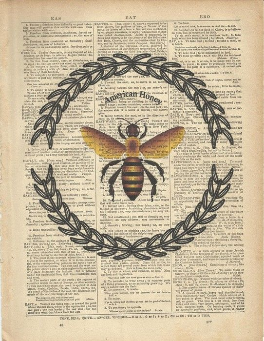 Best 50 Bees Images On Pinterest Bees Honey And Honey Bees