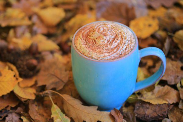 Hozzávalók:1 és 1/2 bögre mandulatej (cukor nélküli), 1 vaníliarúd kikapart belseje, 40 gr étcsokoládé (80 % vagy magasabb kakaótartalommal), 1 ek. kakaópor, 45 gr méz. Tejszínhabhoz: 150-200 ml kókusztej, 1 ek.