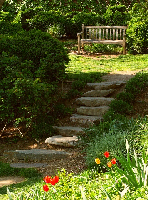 Outdoor Pathways 51 best outdoor steps images on pinterest | garden steps, stairs