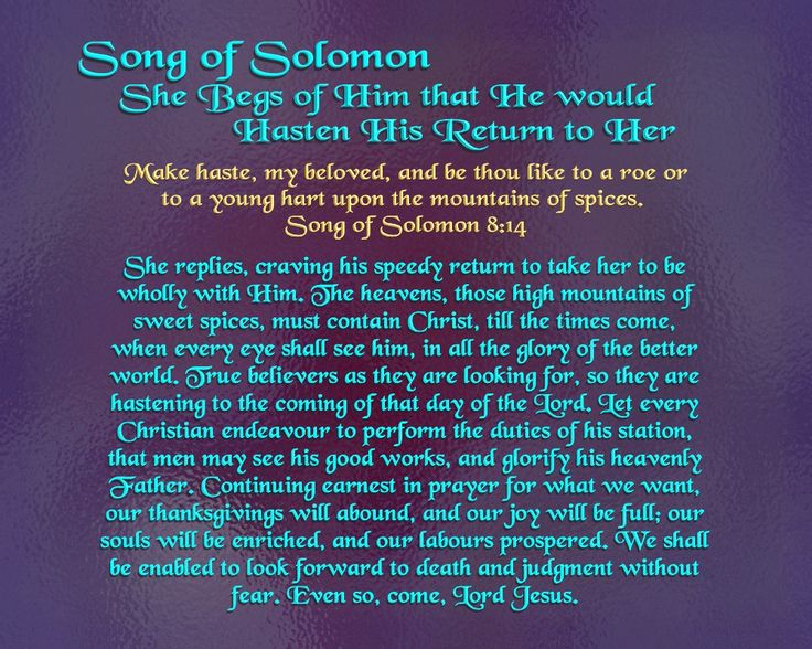 essay on minorities in song of solomon Song of songs c 500 bc - c 300 bc  hebrew poem an erotic poem, the song of songs (also known as the song of solomon and the canticle of canticles) is one of the kethubim, or writings, in.