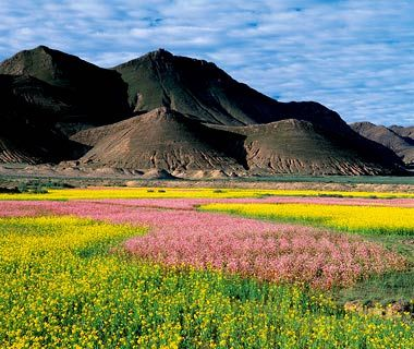 Tibetan Plateau, Tibet