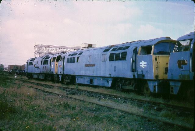 Class 52 D1021 Western Cavalier, D1034 Western Dragoon and D1011 Western Thunderer at Swindon Works