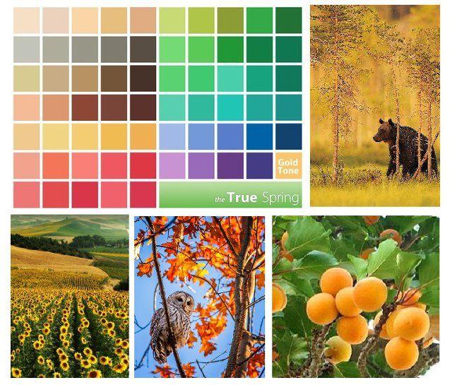 Теплая весна — это золотистые яркие тона, жизнерадостные акриловые краски, ассоциирующиеся с весенним лугом, полным разнообразных цветов, со свежей зеленью и голубым небом, освещаемым золотистым солнцем. Хотя, конечно же , в природе такие цвета встречаются не только весной.