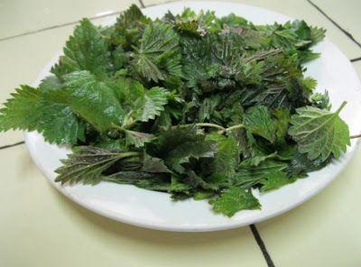 Салат из крапивы — 3 быстрых и невероятно полезных рецепта