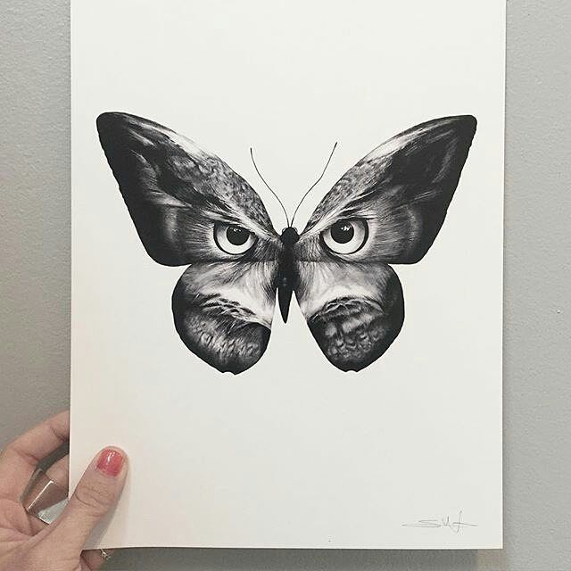 "Great looking #penandink #drawing by @sannawieslander (on IG) called ""Owlifly""…"