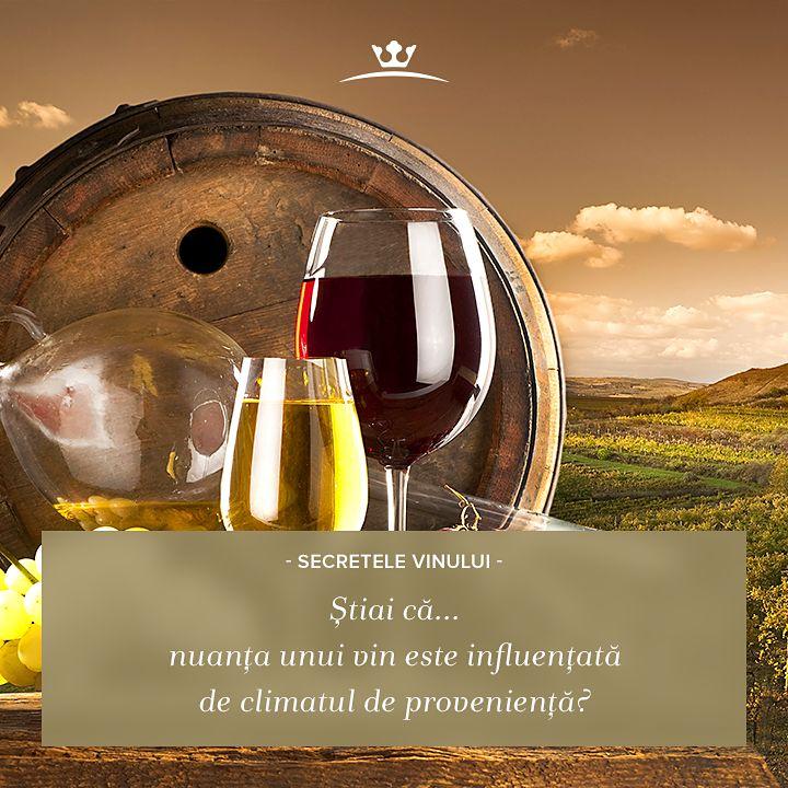 """Vinurile de calitate își arată climatul de proveniență, prin nuanța lor: vinurile (albe sau roșii) de nuanță mai închisă, intensă, sunt făcute din struguri cultivați într-un climat mai rece, în timp ce culorile mai deschise ale vinului """"trădează"""" un climat mai răcoros."""