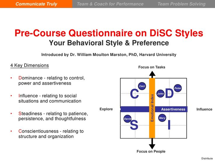 DiSC in a Nutshell - Quick View by iamcollinlam via slideshare