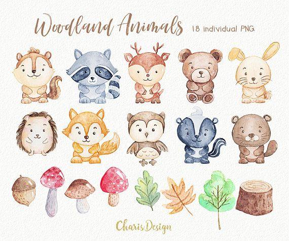 Woodland Animal Illustration Watercolor Clipart Nursery Forest Etsy Animal Illustration Woodland Animals Baby Squirrel
