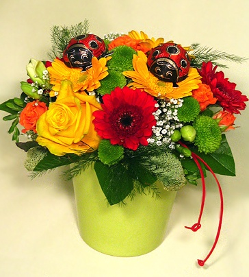 Now, super prices! fresh and cheerful gift ceramic pot. In addition to fine marzipan flowers katicákkal send your best wishes! Also available in two sizes! - flower 9-11, 10-inch pot: £ 5,950 - flowers 15-17, 12-13's pot: