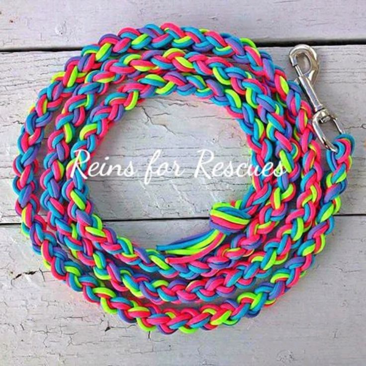 The Lead Rope. Such an integral part of your tack, no matter your discipline. Used to manage your horse, pony, donkey, mule, goat or even the dog leash, in a pinch. A work horse. And, you know you nee