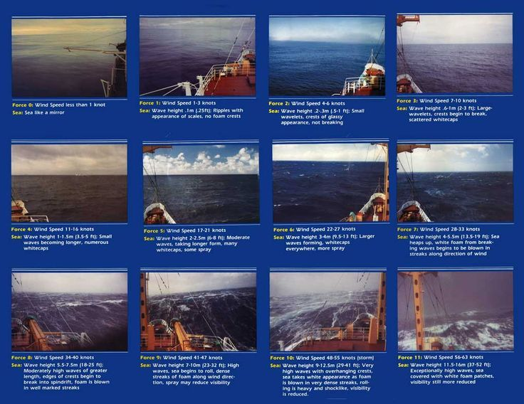 Image result for Beaufort Scale english kids