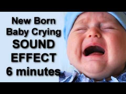 Get You Cat and Dog use to a Baby Crying 6 minuntes SOUND EFFECT - YouTube