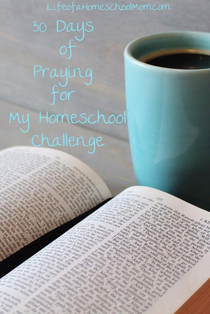 Take 30 days and pray bold, intentional prayers for your homeschool by taking the Praying for My Homeschool Challenge. This 30-day challenge provides daily scripture readings, video reflections, daily focus words, and daily prayer prompts in a beautifully designed journal.