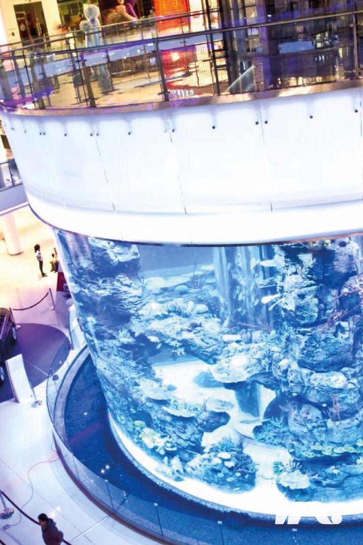"""Pusat perbelanjaan terbesar kedua di Afrika ini mempunyai luas hingga 200.000 meter persegi. Mall Maroko dirancang oleh Arsitek Davide Padoa dan memiliki akuarium besar yang berisi lebih dari 40 spesies ikan yang berbeda. Akuarium itu disebut """"Aquadream"""" yang dirancang dan dibangun oleh International Concept Management (ICM). Pengunjung memiliki kesempatan untuk naik melalui pusat akuarium berbentuk silinder dengan pemandangan 360 derajat panorama bawah laut. Pengunjung juga bisa pergi scuba…"""