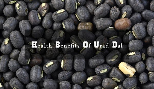 Health and Nutrition Tips: Benefits Of Urad Dal   Health and Nutrition Tips: Benefits Of Urad Dal  Urad dal also known as lentils white or black lentils is a species of bean from the list of distances of India and is mainly used in South Asia. Urad dal us
