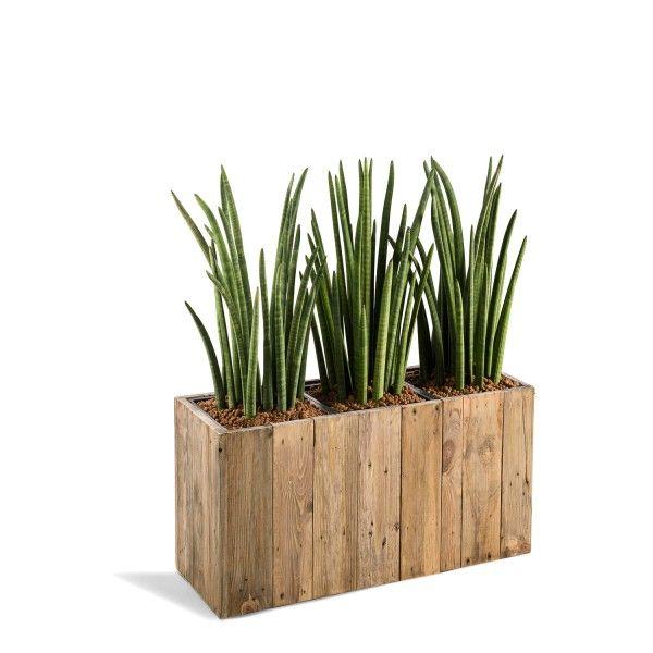 1000 ideas about pflanzkasten holz on pinterest. Black Bedroom Furniture Sets. Home Design Ideas