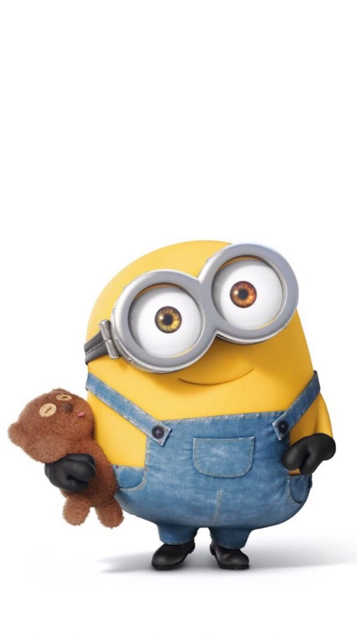 Bob the Minion and his teddy bear, Tim