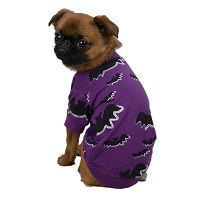 Bat T-Shirt Dog Halloween Costume Price €12.99 [£11.30]