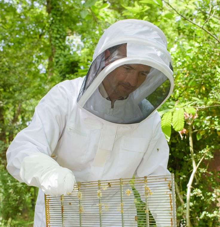Bee Suits and Protective Clothing Ideas For Beekeepers