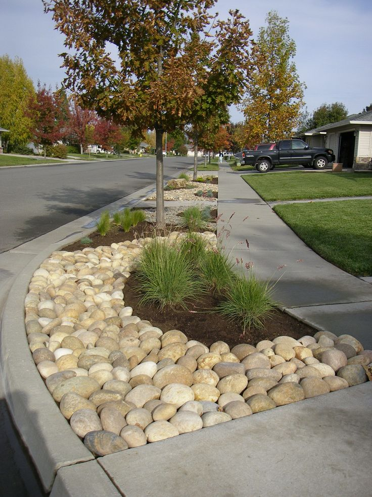 Mexican beach pebbles bioswale rain garden pinterest for Beach rocks for landscaping