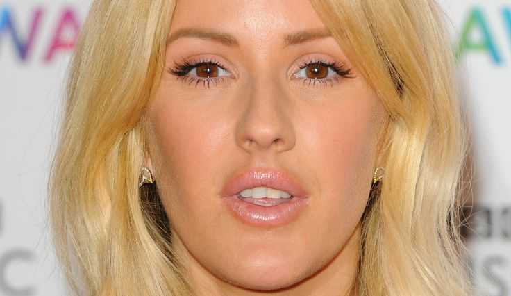Ellie Goulding Rejects Shkreli But Dissed For Homeless Meet
