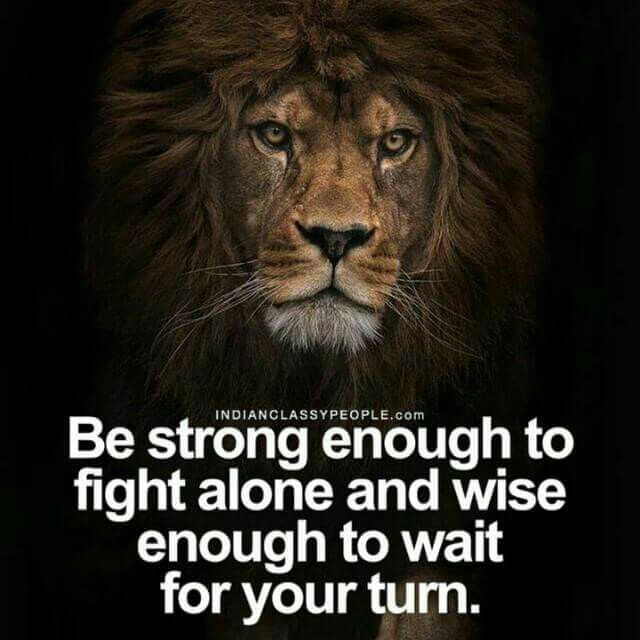Strong | Things to Think | Life quotes, Lion quotes ...