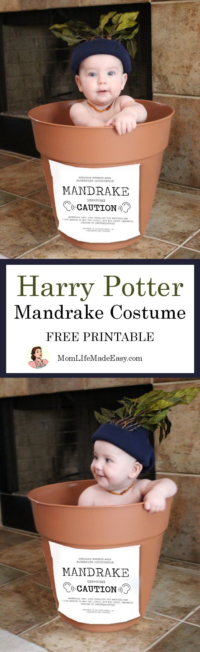 Need an easy Halloween costume for a baby? This Harry Potter Mandrake costume takes about 15 minutes (or less) to throw together, and costs only $10!!