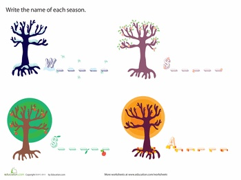 Worksheets: What Are the Seasons?