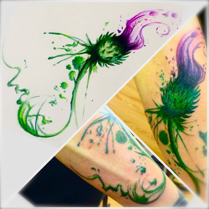 deviantart more like thistle tattoo design by dazzbishop tattoos pinterest thistle tattoo. Black Bedroom Furniture Sets. Home Design Ideas