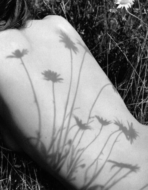 La primavera ha la tua pelle e il cuore dei tuoi petali. E t'amo del vento che sensa la tua rugiada e la raggiunge. Bdìn #poesia <3