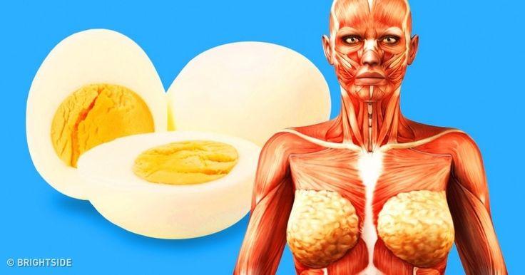 Οι χρήσιμες ιδιότητες των αβγών κοτόπουλου έχουν αμφισβητηθεί επανειλημμένα. Οι άνθρωποι συκοφαντούσαν αυτό το προϊόν, το οποίο