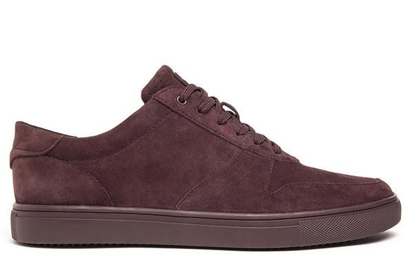 Gregory SP – CLAE