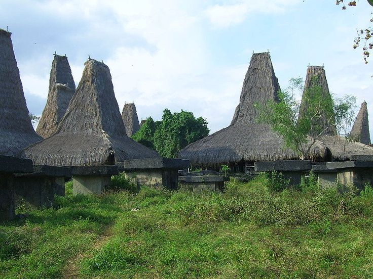 Traditional Sumbaneese houses located in Bondokodi, West-Sumba in Indonesia