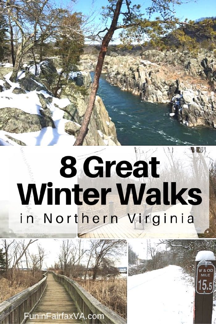 Here are 8 great winter walks in Northern Virginia, on dirt, paved, or boardwalk trails that are enjoyable except when conditions are icy or very wet.