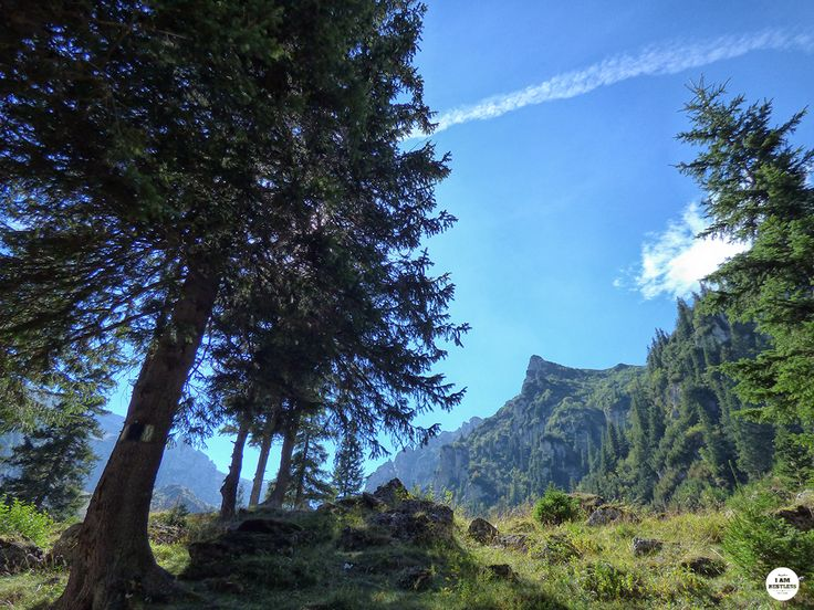 Hiking Trail from Diham Chalet to Malaiesti - See more pics at I Am Restless Travel Blog