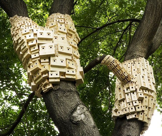 http://www.homesthetics.net/urban-green-spaces-biodiversity-spontaneous-city-structure-birds/