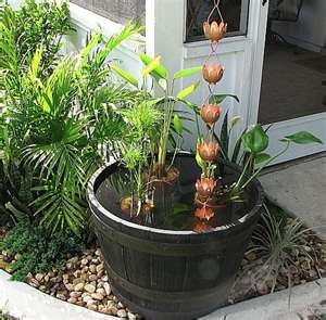 Genuis! Fill a tub with rainwater and have a waterlily pond!