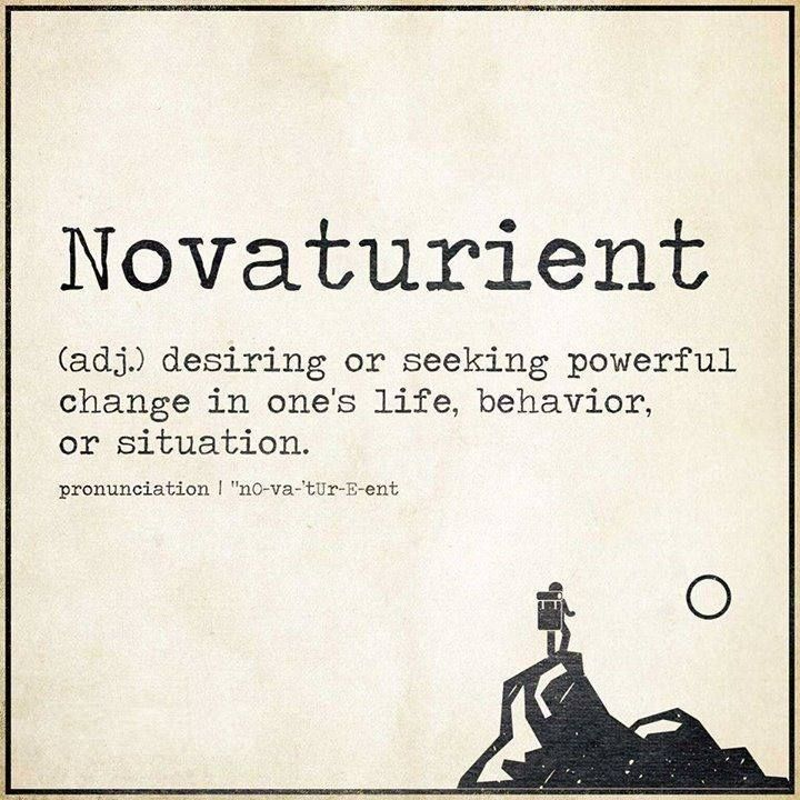 "Novaturient Often, frequently due to illogical situations that are ""how it's always been done"" #INTJ"