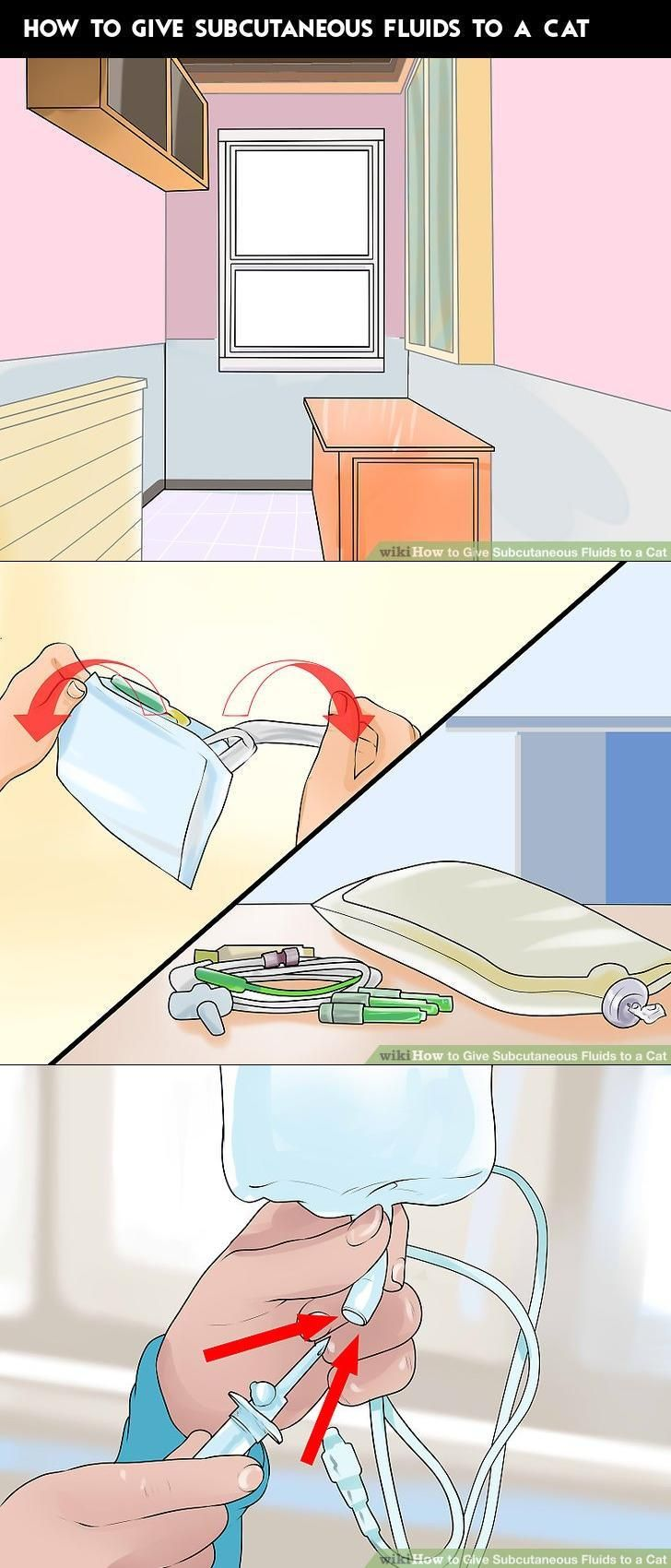How to Give Subcutaneous Fluids to a Cat Sick cat