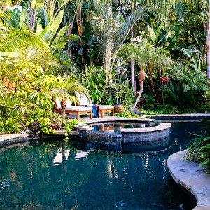836 best landscaping suitable for hawaii images on pinterest