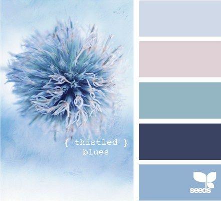 Color Palettes, Bathroom Colors, Design Seeds, Thistles Blue, Colors Combinations, Colors Palettes, Colors Schemes, Master Bedrooms, Painting Colors