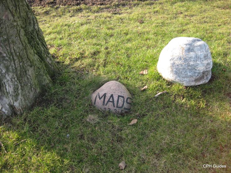 Tombstone. Dog called Mads.